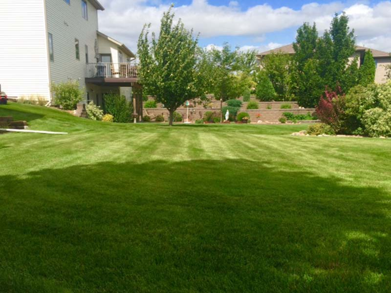 Lawn Mowing: